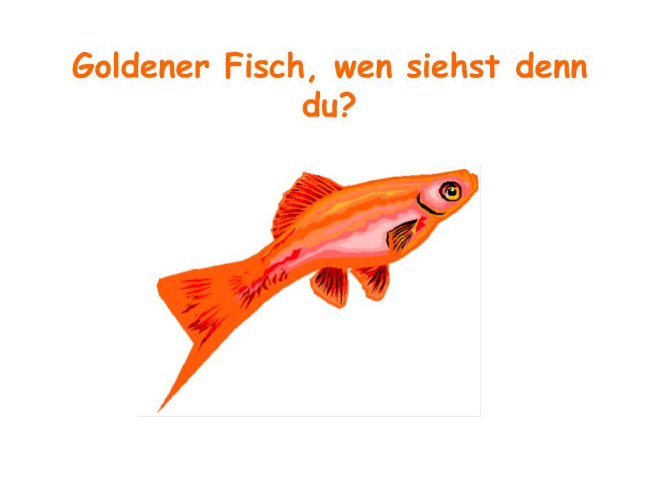 Goldener Fisch, wen siehst denn du