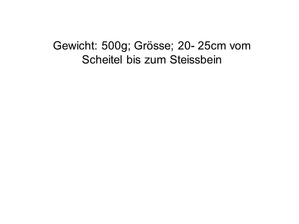 Gewicht: 500g; Grösse; 20- 25cm vom Scheitel bis zum Steissbein