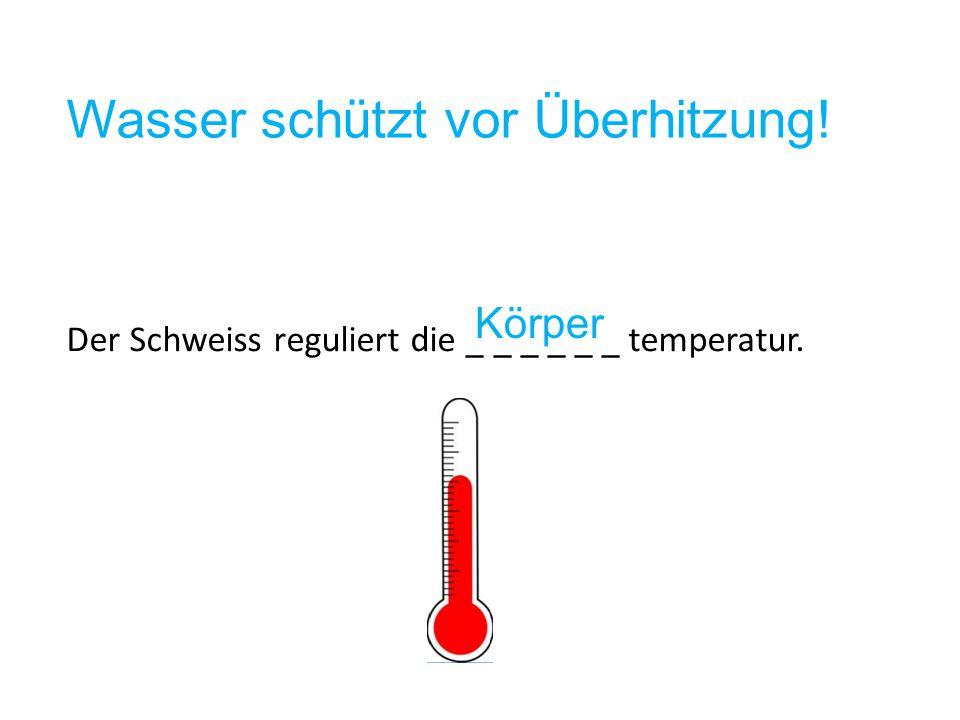 Wasser schützt vor Überhitzung!