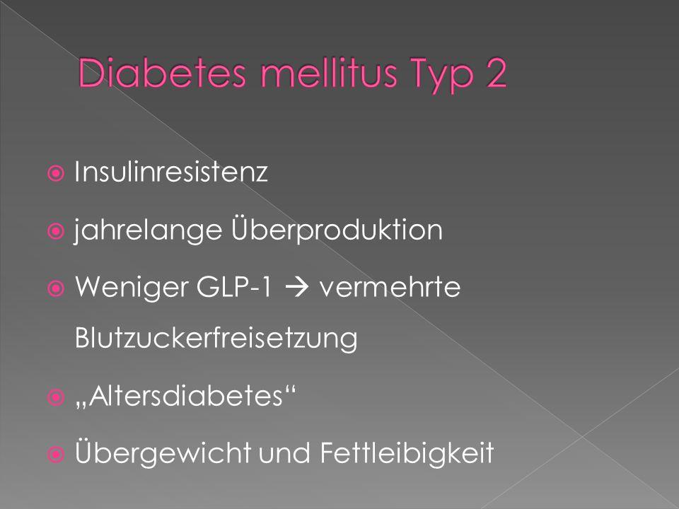 Diabetes mellitus Typ 2 Insulinresistenz jahrelange Überproduktion
