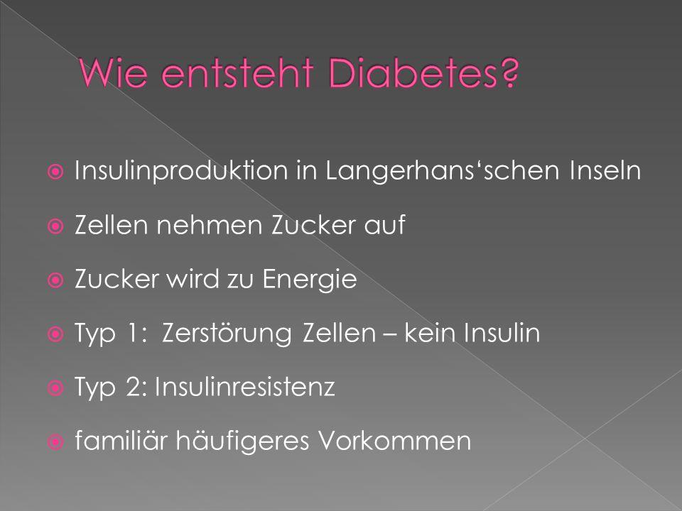 Wie entsteht Diabetes Insulinproduktion in Langerhans'schen Inseln