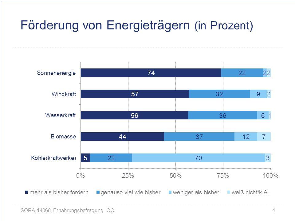 Förderung von Energieträgern (in Prozent)