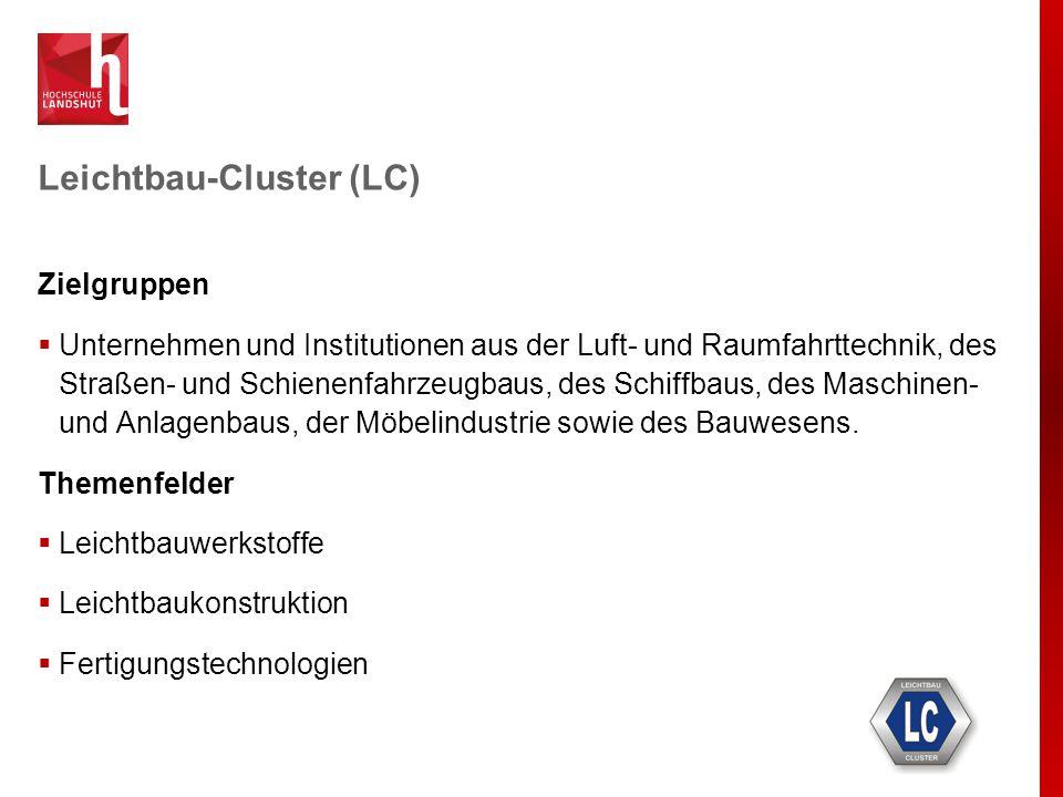 Cluster Mikrosystemtechnik (MST)