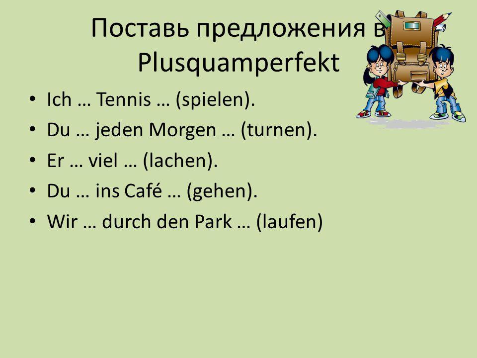 Поставь предложения в Plusquamperfekt