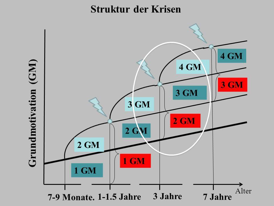 Struktur der Krisen Grundmotivation (GM) 4 GM 4 GM 3 GM 3 GM 3 GM 2 GM