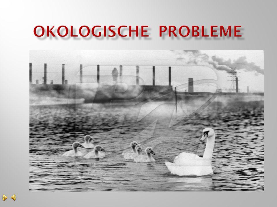 Okologische probleme Учитель Рогачева Л.В.