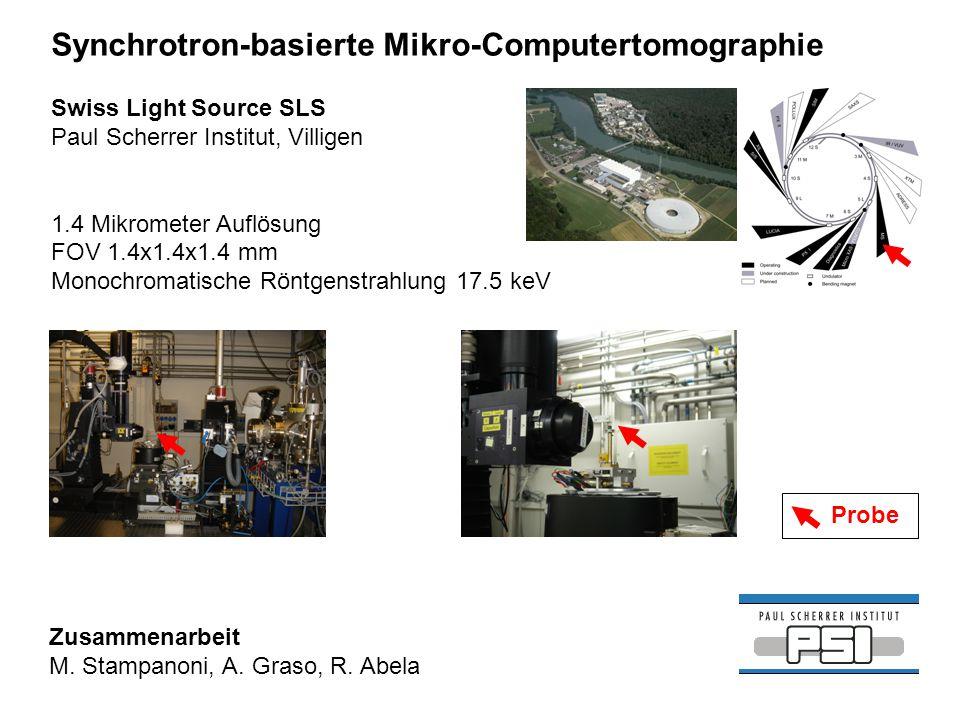 Synchrotron-basierte Mikro-Computertomographie