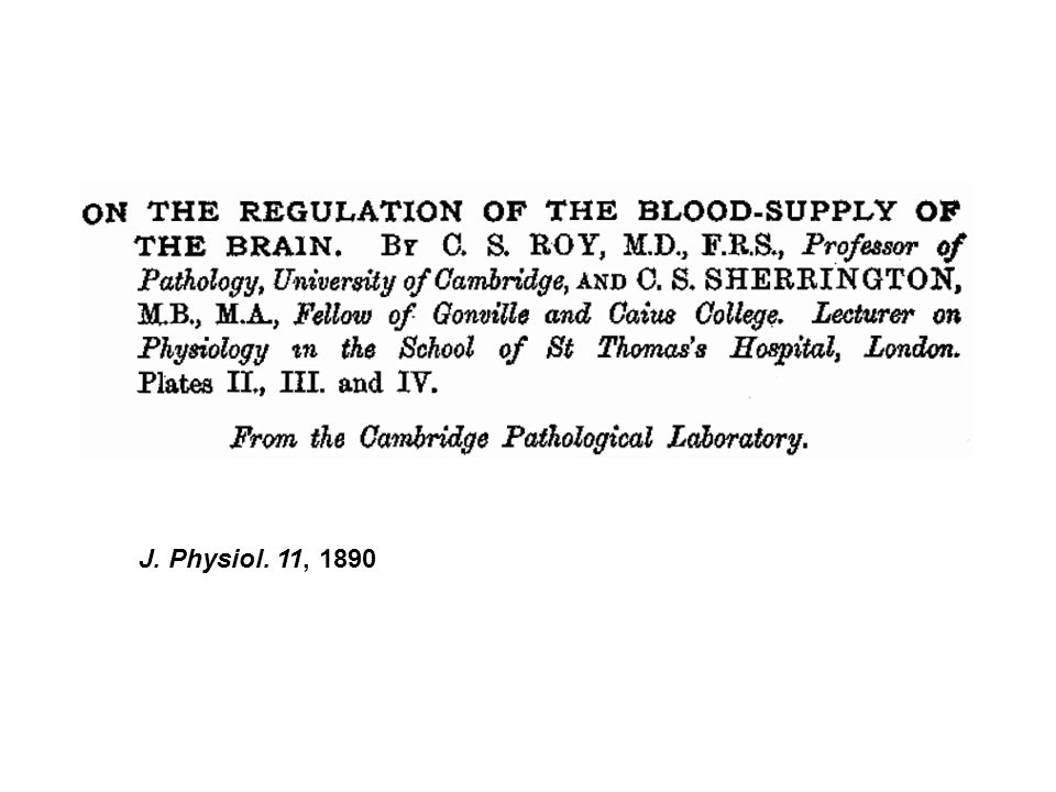 Vor mehr als 100 Jahren haben Roy und Sherrington in dieser bahnbrechenden Arbeit zum ersten Mal postuliert, dass das Gehirn den Blutfluss lokal reguliert und den Energiansprüchen anpasst. Dies ist auf gewisse Weise der Grundstein für die modernen nicht-invasiven bildebenden Methoden in den Neurowissenschaften. Weil das Gehirn keine Energiereserven besitzt, muss bei einer gesteigerten Gehirnaktivität der Blutfluss erhöht werden, um eben diesen Mehraufwand durch die Zuführung zusätzlicher Energiesubstrate zu decken. Dies ist der Grund, warum wir mit so über den Blutfluss Informationen über die lokale Aktivität der Hirnzellen gewinnen können.