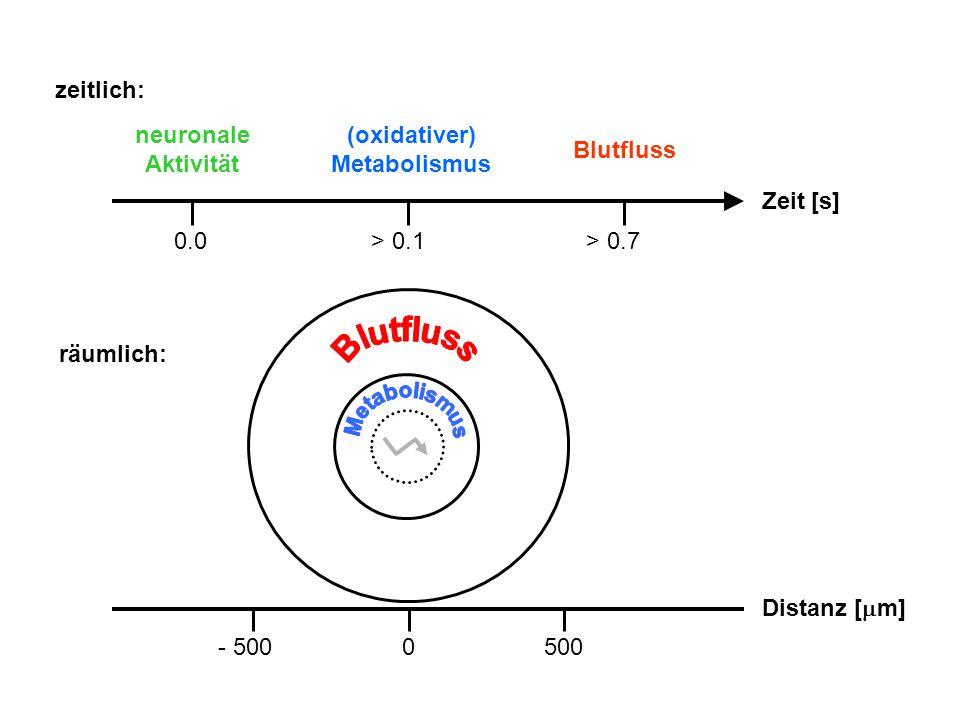 (oxidativer) Metabolismus
