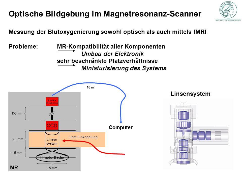 Optische Bildgebung im Magnetresonanz-Scanner