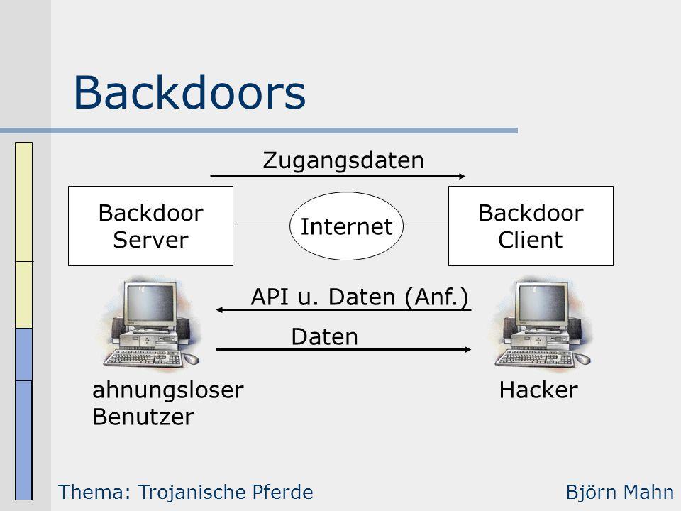 Backdoors Zugangsdaten Backdoor Server Backdoor Client Internet