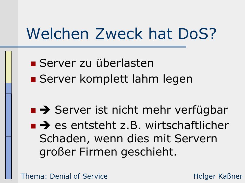 Welchen Zweck hat DoS Server zu überlasten Server komplett lahm legen