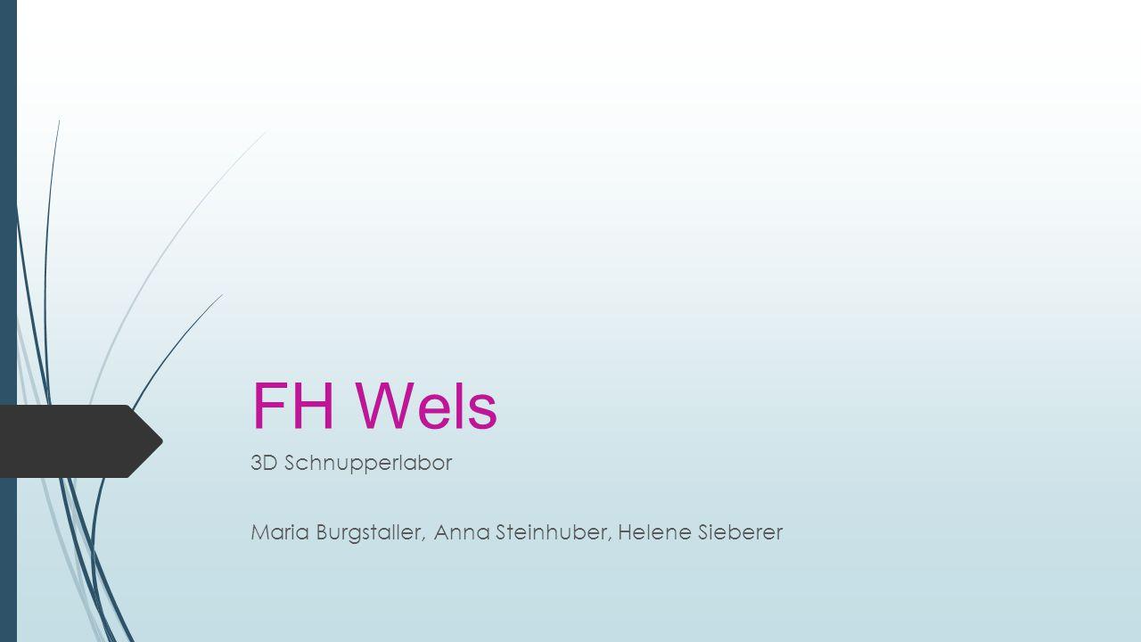 3D Schnupperlabor Maria Burgstaller, Anna Steinhuber, Helene Sieberer