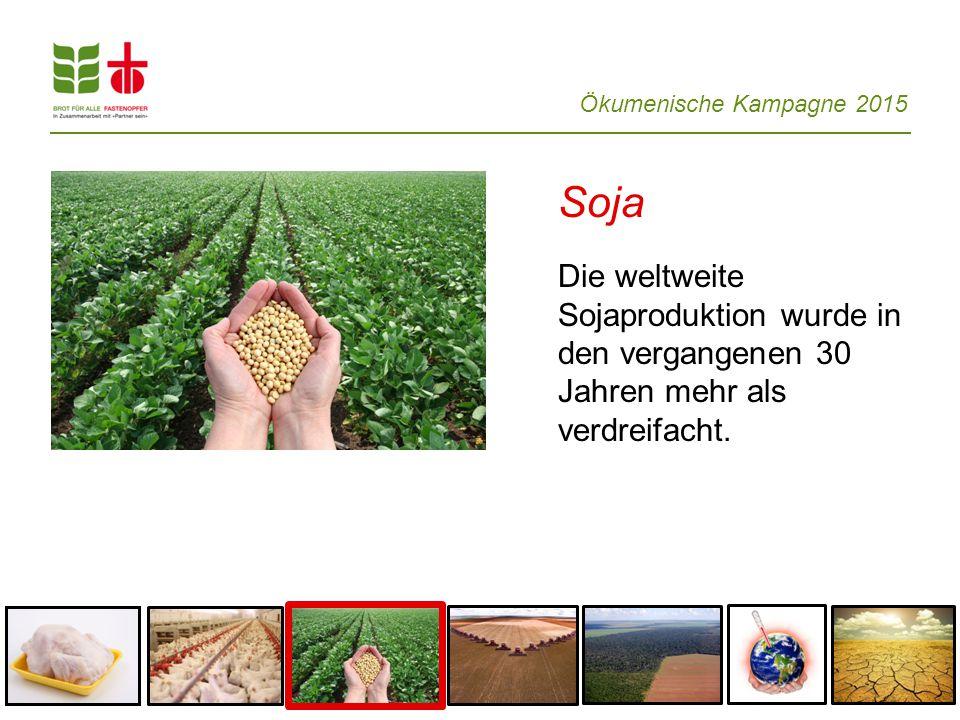 Soja Die weltweite Sojaproduktion wurde in den vergangenen 30 Jahren mehr als verdreifacht.