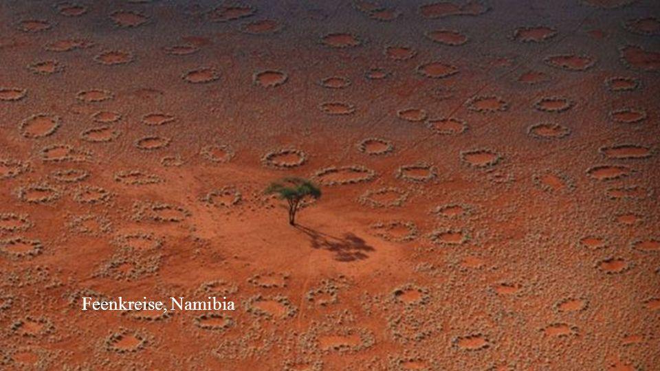 Feenkreise, Namibia
