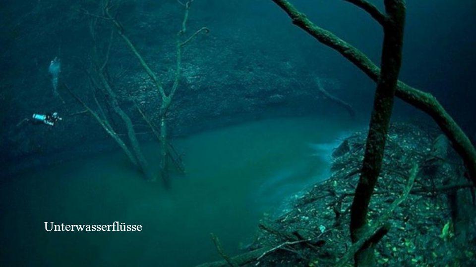 Unterwasserflüsse