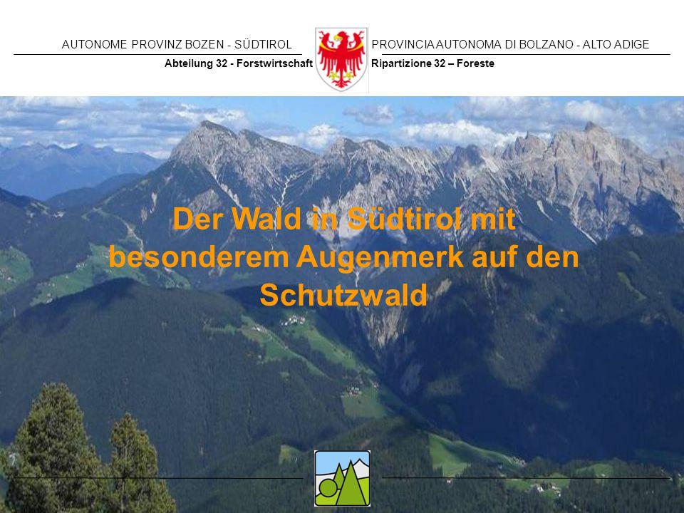 Der Wald in Südtirol mit besonderem Augenmerk auf den Schutzwald