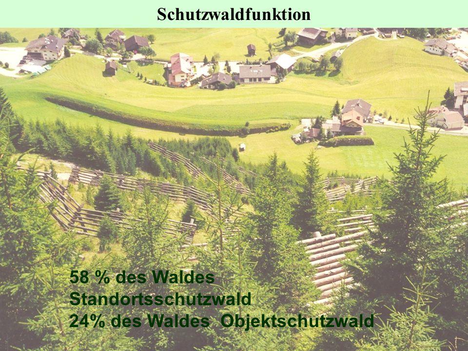 Schutzwaldfunktion 58 % des Waldes Standortsschutzwald 24% des Waldes Objektschutzwald