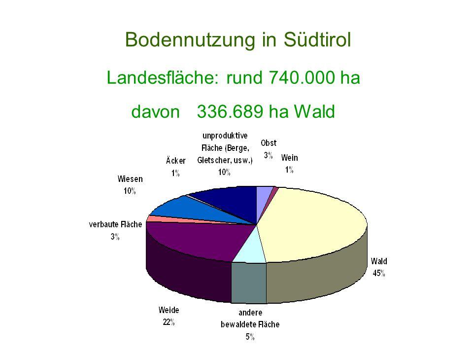 Bodennutzung in Südtirol