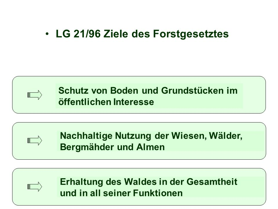 LG 21/96 Ziele des Forstgesetztes