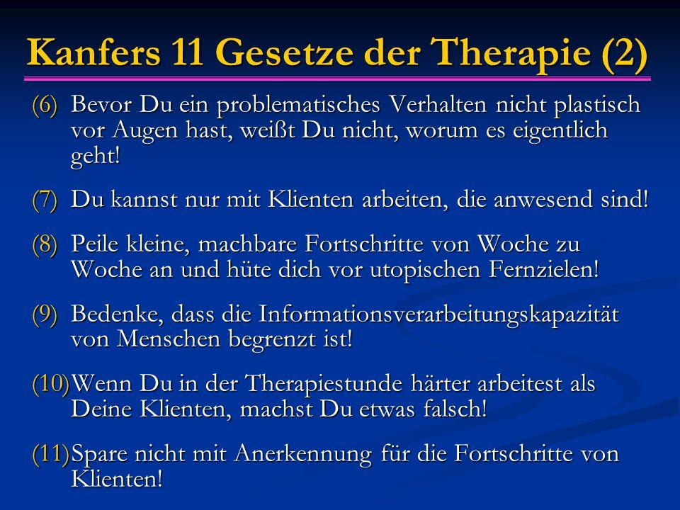 Kanfers 11 Gesetze der Therapie (2)
