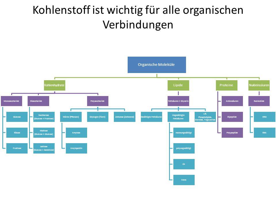 Tolle Herstellung Von Verbindungen Arbeitsblatt Bilder - Super ...