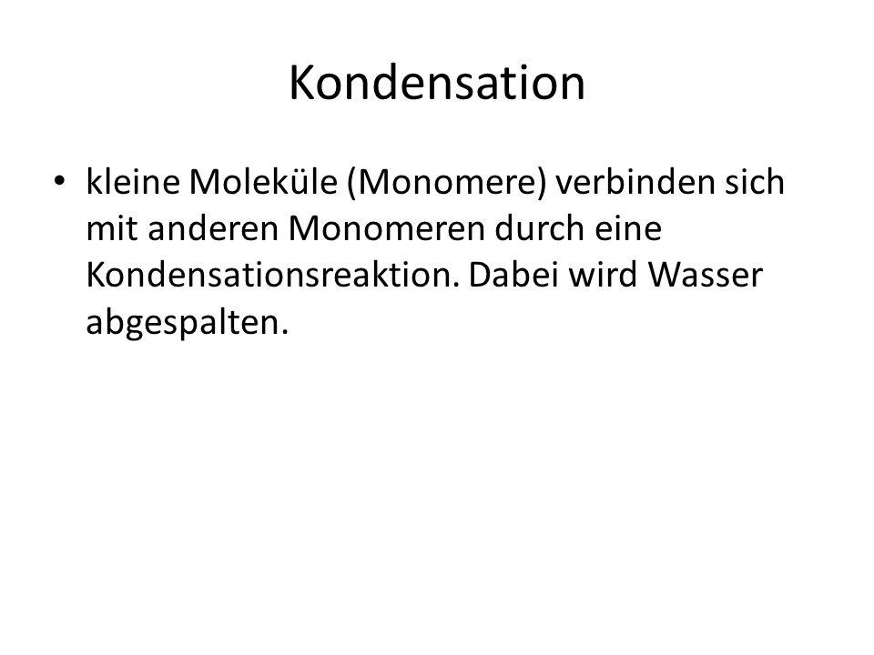 Kondensation kleine Moleküle (Monomere) verbinden sich mit anderen Monomeren durch eine Kondensationsreaktion.