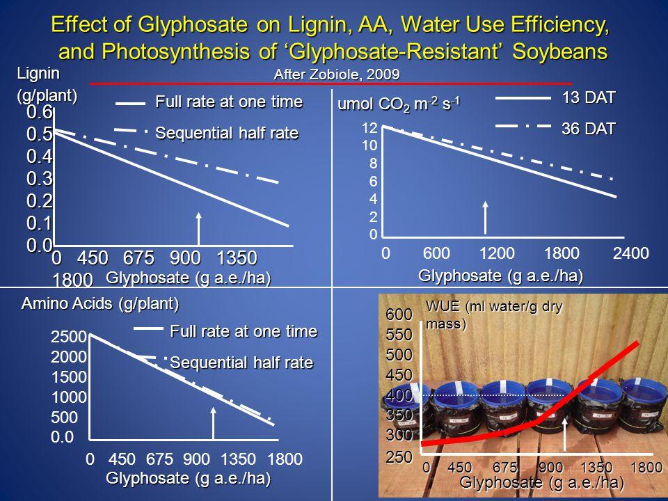 Effect of Glyphosate on Lignin, AA, Water Use Efficiency,