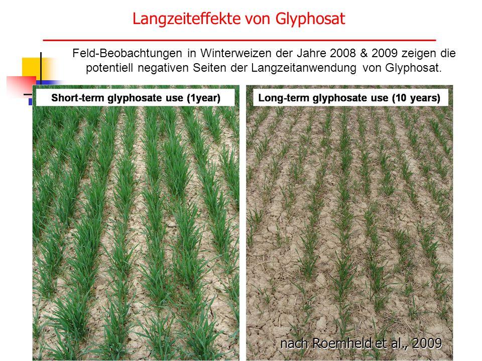 Langzeiteffekte von Glyphosat