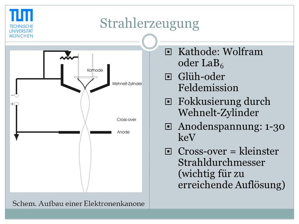 Strahlerzeugung Kathode: Wolfram oder LaB6 Glüh-oder Feldemission