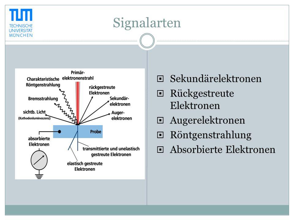 Signalarten Sekundärelektronen Rückgestreute Elektronen