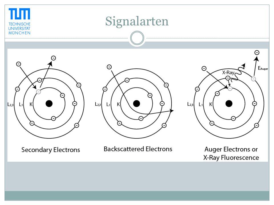 Signalarten
