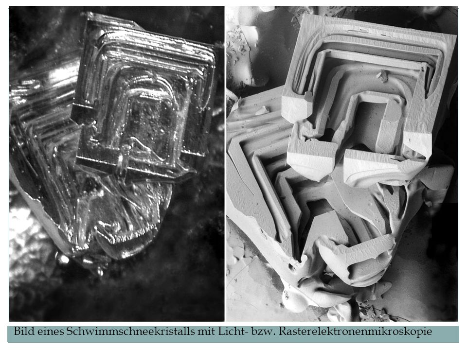 Bild eines Schwimmschneekristalls mit Licht- bzw