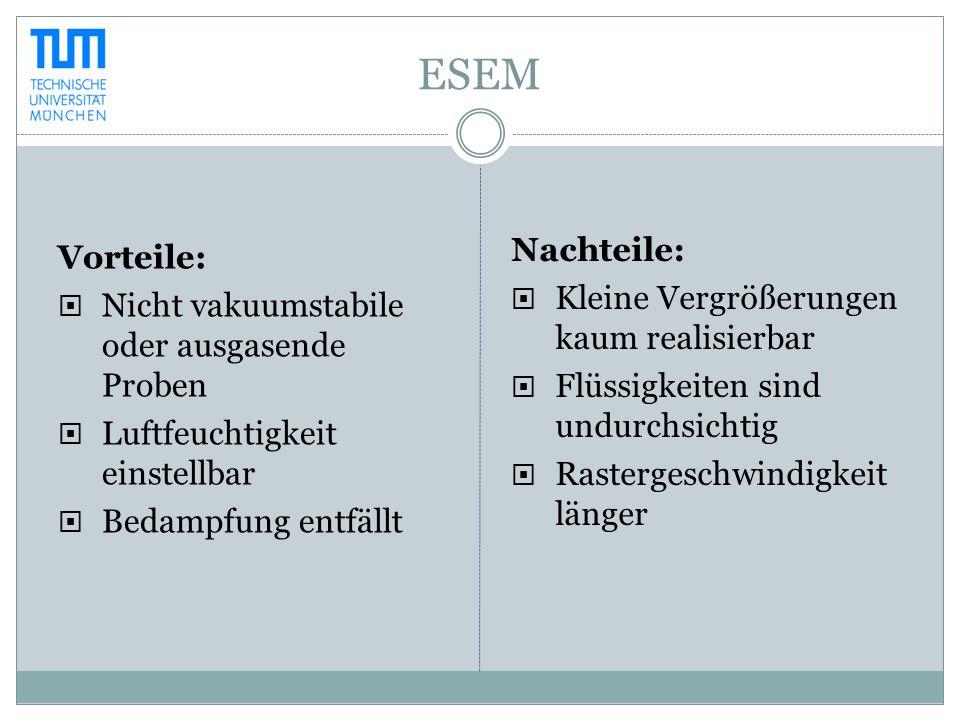 ESEM Nachteile: Vorteile: Kleine Vergrößerungen kaum realisierbar