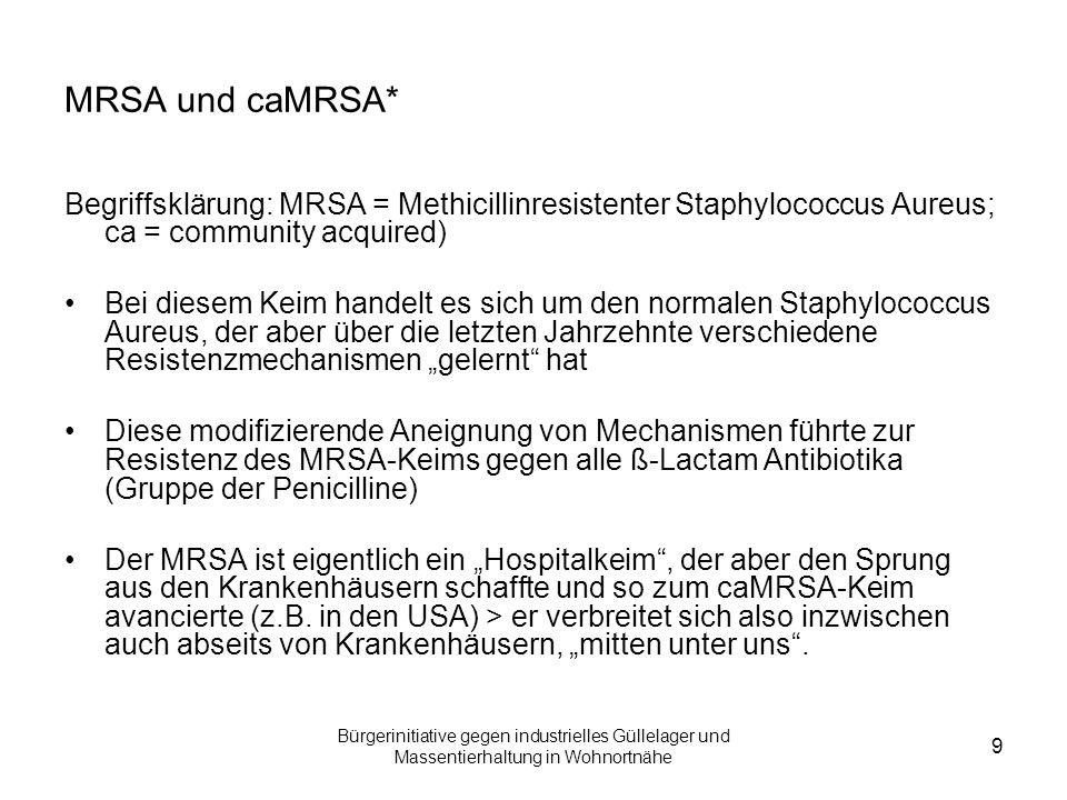 MRSA und caMRSA* Begriffsklärung: MRSA = Methicillinresistenter Staphylococcus Aureus; ca = community acquired)