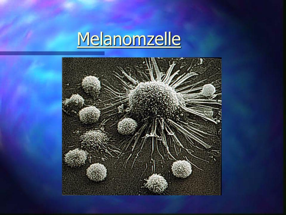 Melanomzelle