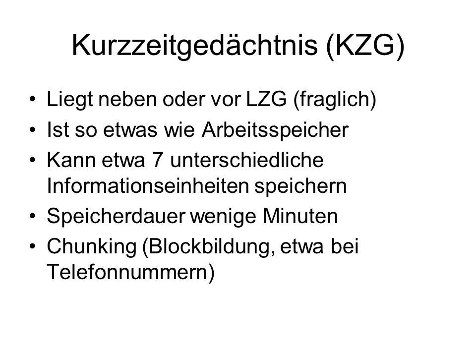 Kurzzeitgedächtnis (KZG)