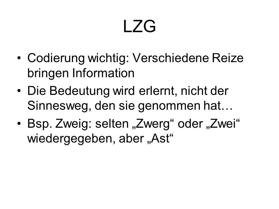 LZG Codierung wichtig: Verschiedene Reize bringen Information