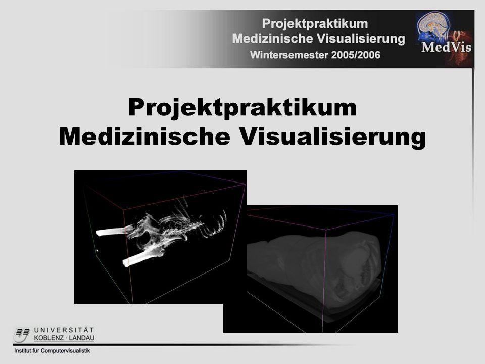 Projektpraktikum Medizinische Visualisierung