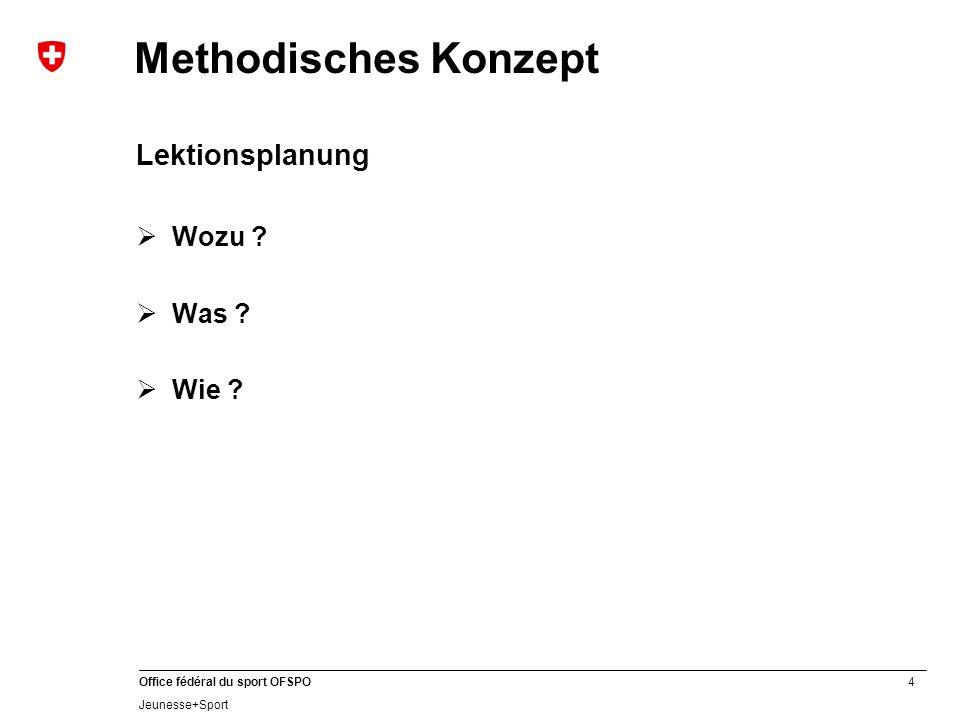Methodisches Konzept Lektionsplanung Wozu Was Wie