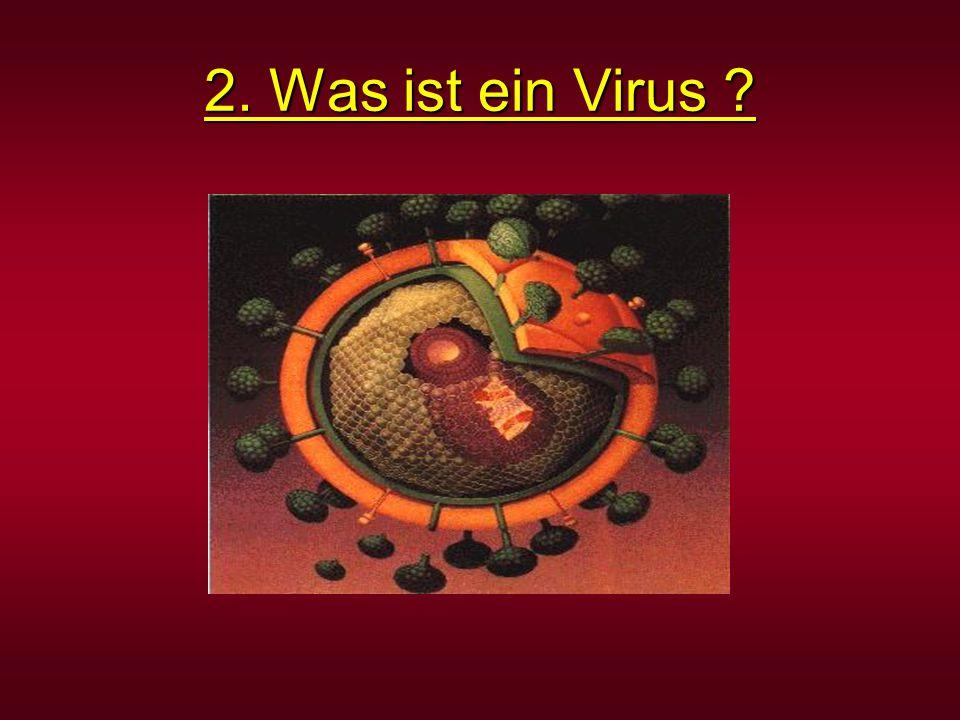 2. Was ist ein Virus