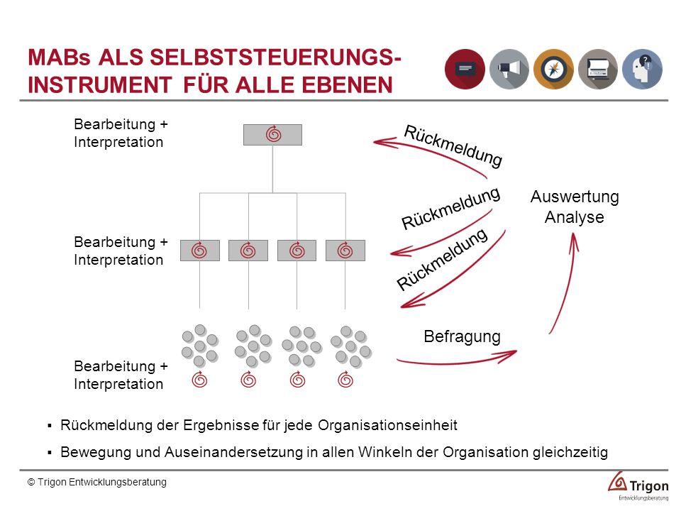 MABs ALS SELBSTSTEUERUNGS- INSTRUMENT FÜR ALLE EBENEN
