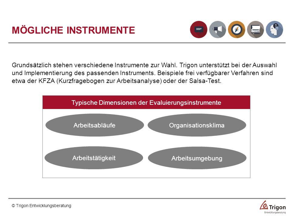 Typische Dimensionen der Evaluierungsinstrumente