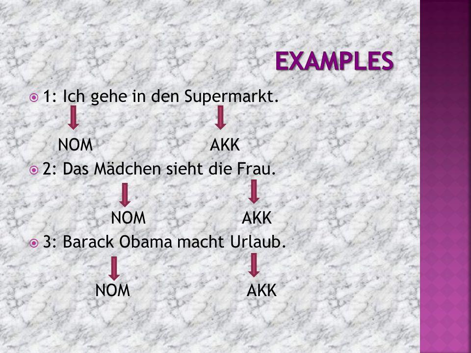 examples 1: Ich gehe in den Supermarkt. NOM AKK