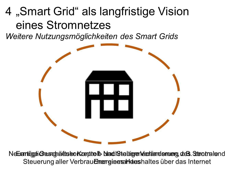 """4 """"Smart Grid als langfristige Vision eines Stromnetzes"""