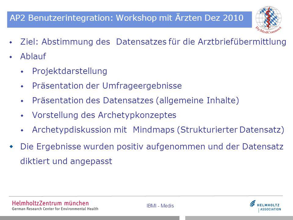 AP2 Benutzerintegration: Workshop mit Ärzten Dez 2010