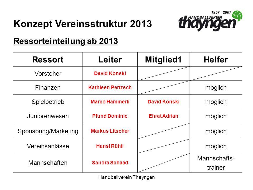 Konzept Vereinsstruktur 2013
