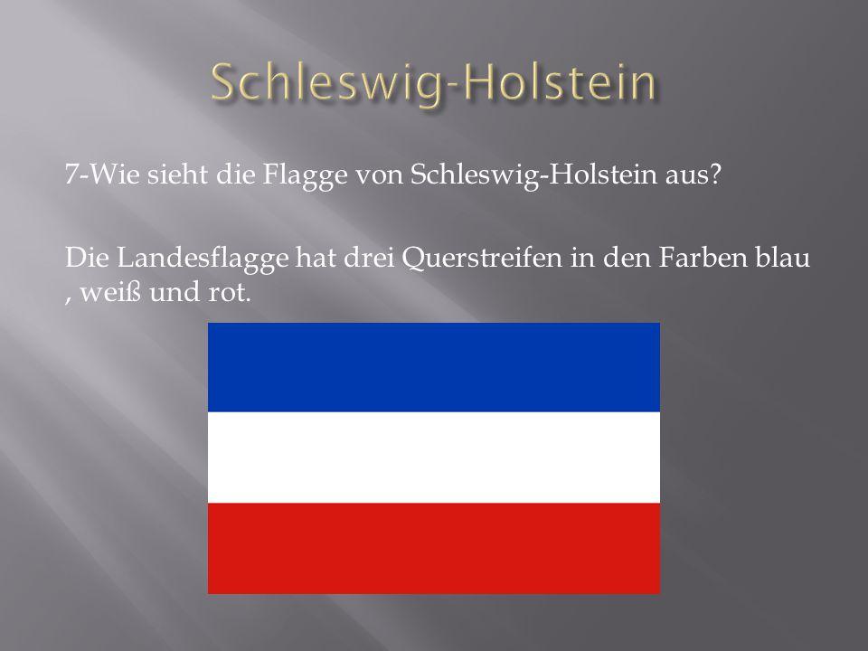 Schleswig-Holstein 7-Wie sieht die Flagge von Schleswig-Holstein aus