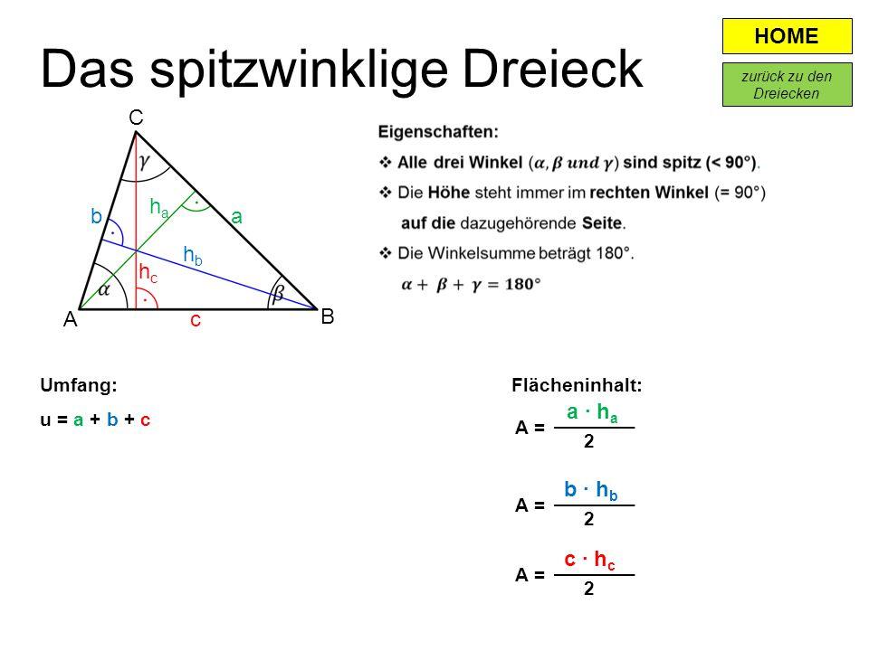 Das spitzwinklige Dreieck