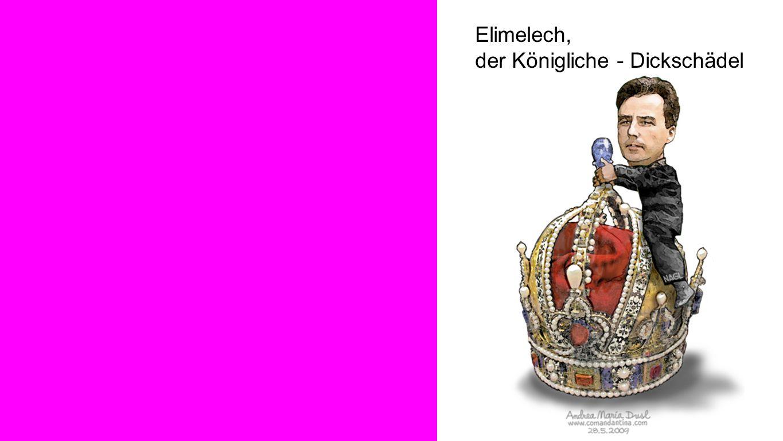 Bild 1 Elimelech, der Königliche - Dickschädel